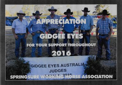 Springsure Working Horse 2016